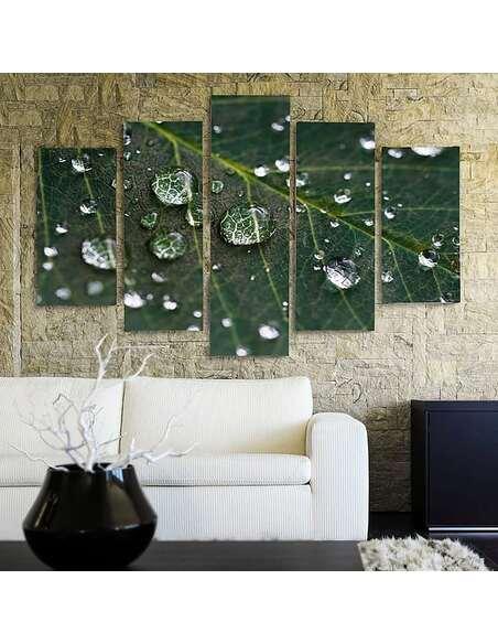 Composition de 5 tableaux RAINDROPS SUR UNE FEUILLE imprimé sur toile - par Feeby