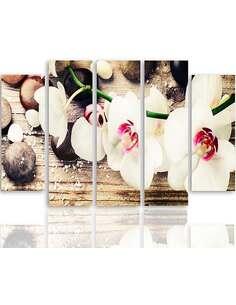 Composition de 5 tableaux UNE ORCHIDÉE BLANCHE ET PIERRES imprimé sur toile - par Feeby