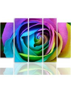 Composition de 5 tableaux COULEUR ROSE imprimé sur toile - par Feeby
