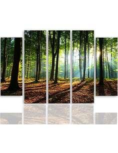 Composition de 5 tableaux RAYONS DU SOLEIL DANS LA FORÊT imprimé sur toile - par Feeby