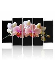 Composition de 5 tableaux UNE ORCHIDÉE ROSE imprimé sur toile - par Feeby