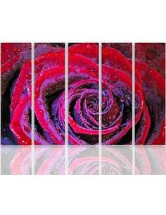 Composition de 5 tableaux ROSE DEWY imprimé sur toile - par Feeby