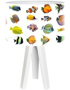 Lampe de chevet Bothanica Multicolore