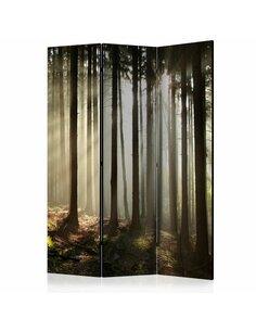 Paravent 3 volets CONIFEROUS FOREST  | Artgeist |