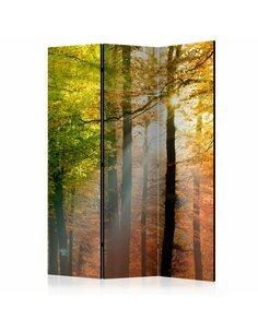 Paravent 3 volets FOREST COLOURS  | Artgeist |