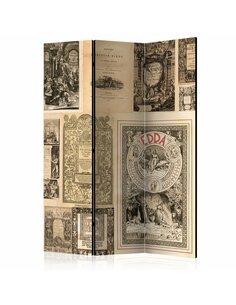 Paravent 3 volets VINTAGE BOOKS  | Artgeist |