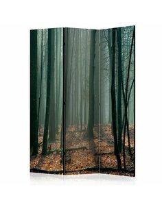 Paravent 3 volets WITCHES' FOREST  | Artgeist |