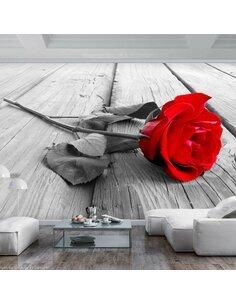 Papier peint ABANDONED ROSE