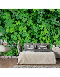 Papier peint GREEN CLOVER