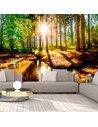 Papier peint MARVELOUS FOREST