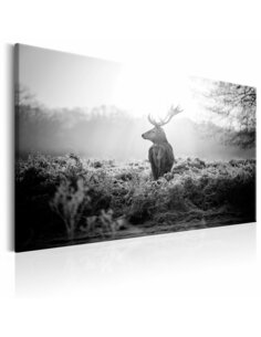 Tableau BLACK AND WHITE DEER
