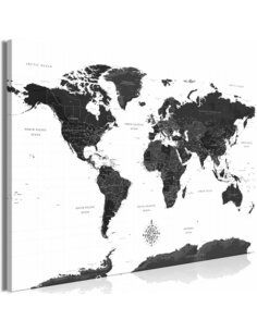 Tableau BLACK AND WHITE MAP WIDE
