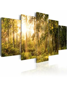 Tableau MAGIC OF FOREST