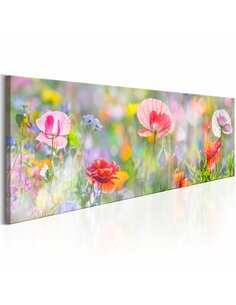 Tableau RAINBOW OF MORNING POPPIES