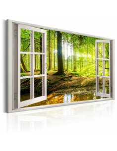 Tableau WINDOW VIEW ON FOREST