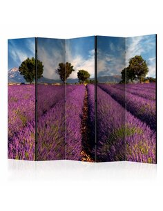 Paravent 5 volets LAVENDER FIELD IN PROVENCE, FRANCE