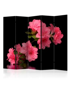Paravent 5 volets AZALEA IN BLACK