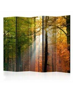 Paravent 5 volets FOREST COLOURS