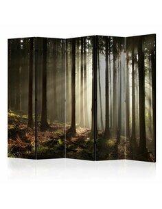 Paravent 5 volets CONIFEROUS FOREST