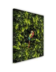 Tableau XXL macaw Image Decor tropical imprimé sur toile