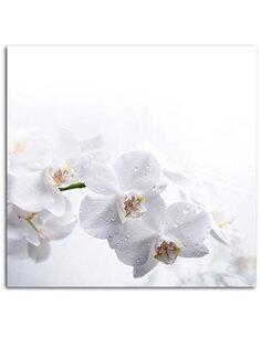 Tableau White Orchids 1