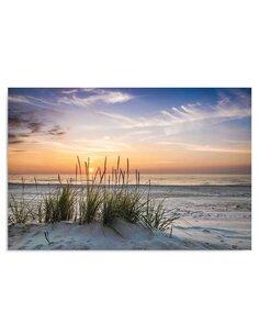 Tableau Grass On The Beach