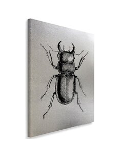 Tableau Insect Drawn 1