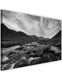 Tableau Wild River 2