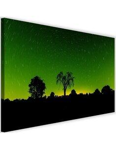 Tableau Starlight 4