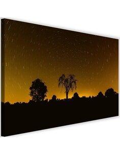 Tableau Starlight 3