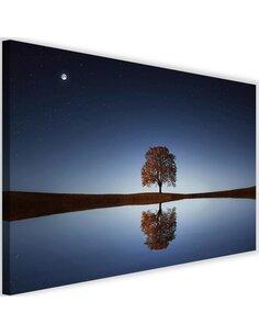 Tableau Tree Under The Night Sky