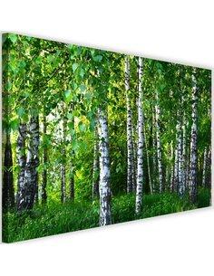 Tableau Birch Forest