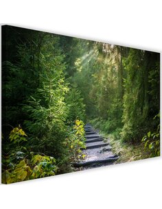 Tableau Path In Green Forest