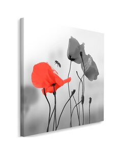Tableau Poppies And Bee