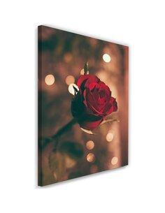 Tableau Red Flower Roses