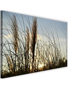 Tableau Reed In The Sun