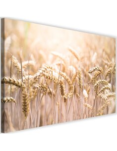 Tableau Corn In The Sun 2