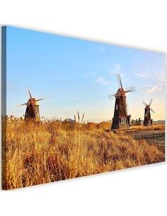 Tableau Dutch Windmills