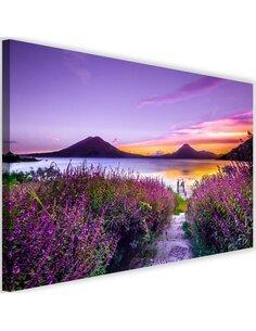 Tableau Purple Paradise