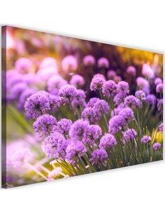 Tableau Purple Garden