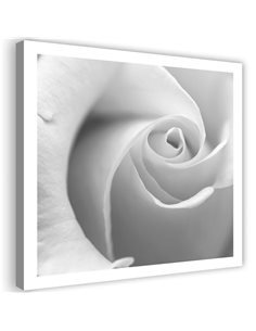 Tableau White Rose 3