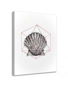 Tableau Geometric Seashell