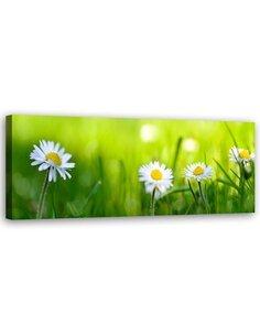 Tableau Daisy Flower