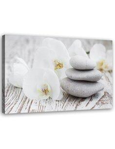 Tableau Zen Flowers And Stones