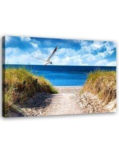 Tableau Bird Above The Beach