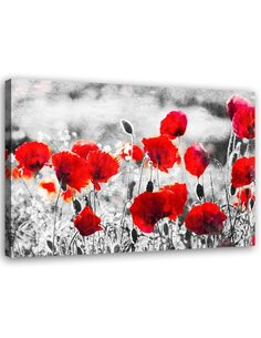 Tableau Poppy Flowers 2