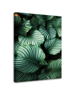 Tableau Green Leaves With Stripes