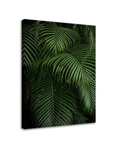 Tableau Green Palm Leaves