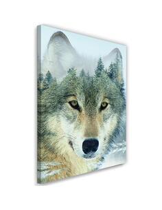 Tableau Gray Wolf