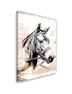Tableau Horse Portrait